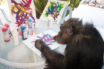 chimp painting